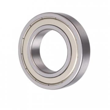 SKF/NSK/NTN/Koyo/NACHI Thrust Ball Bearing (51102)