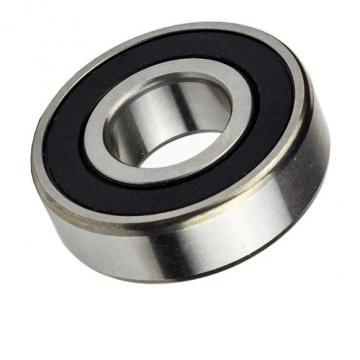 Spherical Roller Bearing SKF Gcr15 Steel 22205e/C3